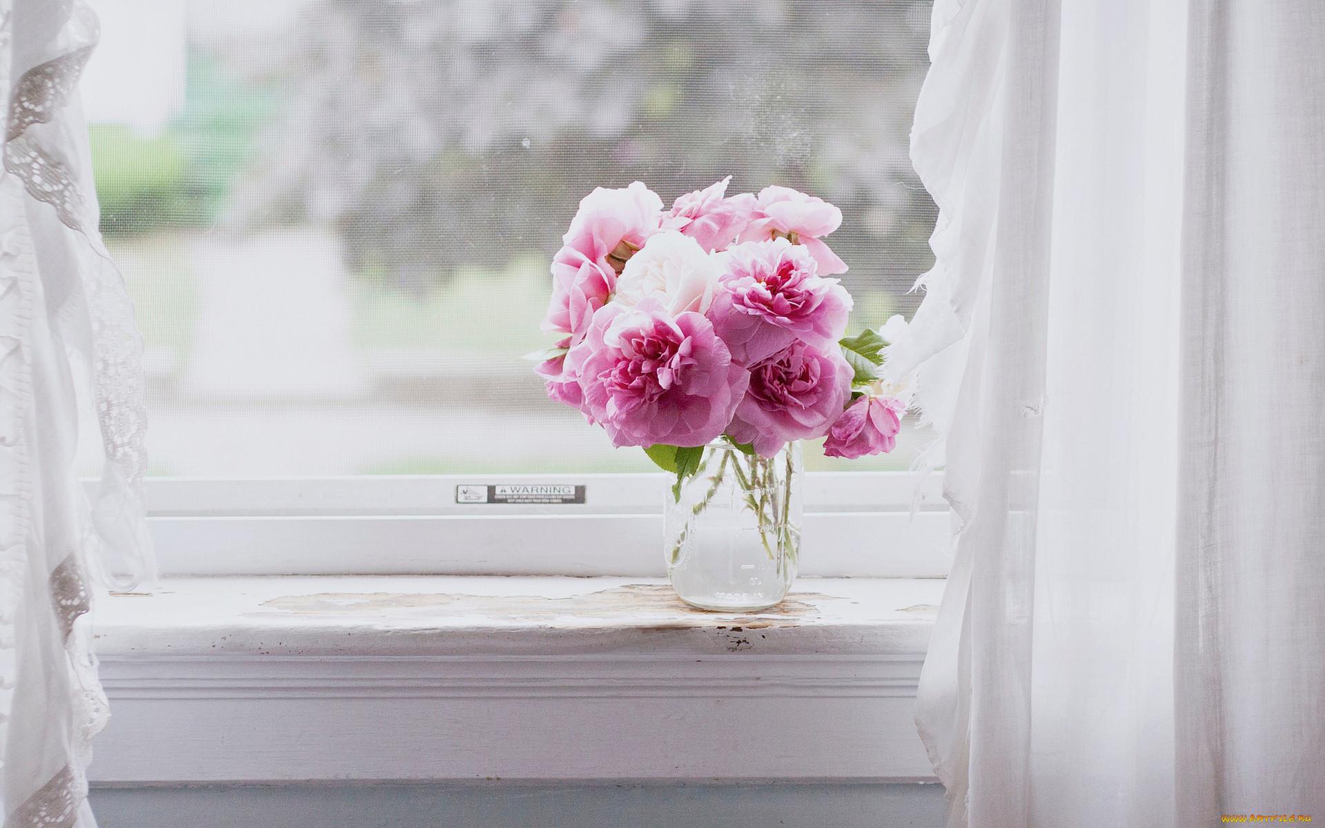 такой обои на телефон окно в розах можно